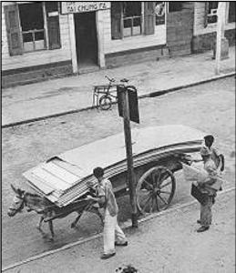 boeriki wagi 1950-1960